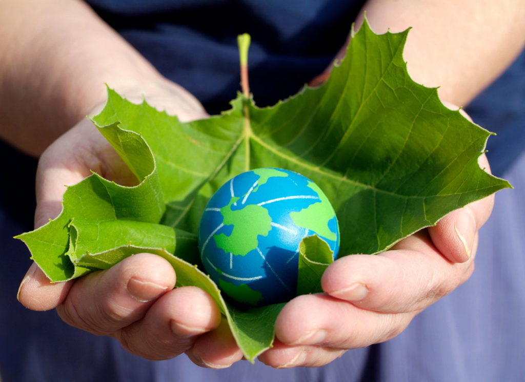 Hands-holding-leaf-and-globe